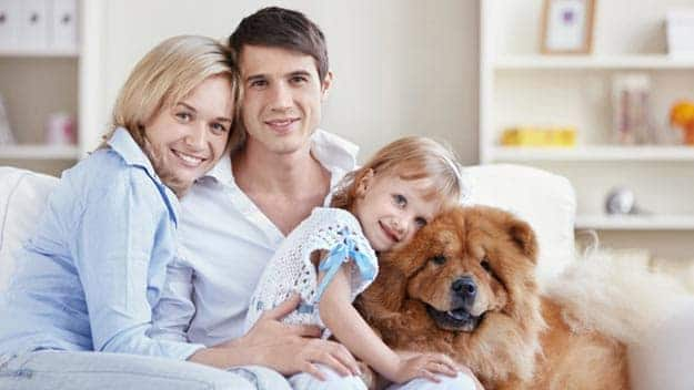 Wills & Trusts dog-young-family Direct Wills Lower Place